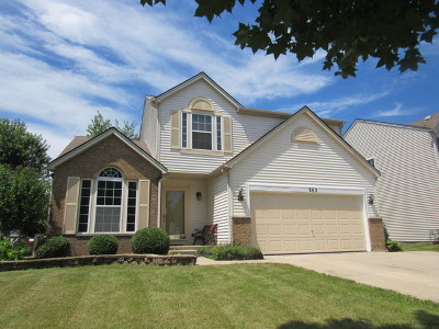 Romeoville Single Family Home New: 262 East Daisy Circle