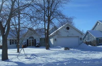 Elburn Single Family Home For Sale: 401 Maple Avenue
