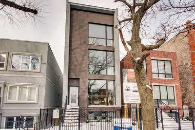 Chicago Condo/Townhouse New: 2344 West Belden Avenue #2