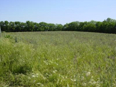Homer Glen Residential Lots & Land For Sale: 16450 South Cedar Road