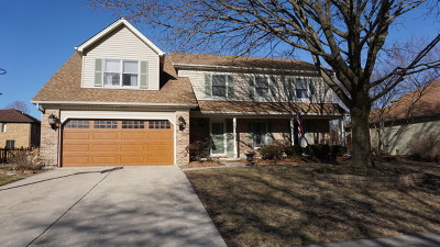 Naperville Single Family Home New: 1517 Terrance Drive