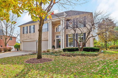 Lisle Single Family Home For Sale: 3732 Pin Oak Court