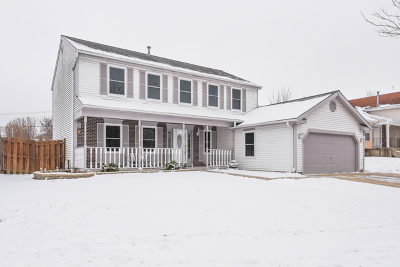 Streamwood Single Family Home New: 72 Brookstone Drive