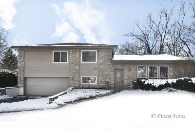 Palatine Single Family Home New: 759 East Stark Drive