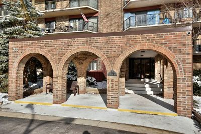 Palatine Condo/Townhouse New: 35 South Baybrook Drive #311