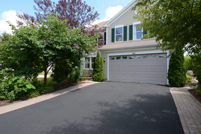 Kane County Single Family Home New: 961 President Street