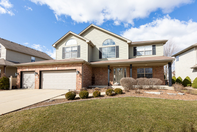 Lockport Single Family Home For Sale: 16602 Lane Drive