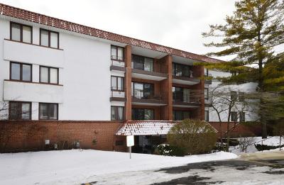 Highland Park Condo/Townhouse New: 2046 Saint Johns Avenue #4G
