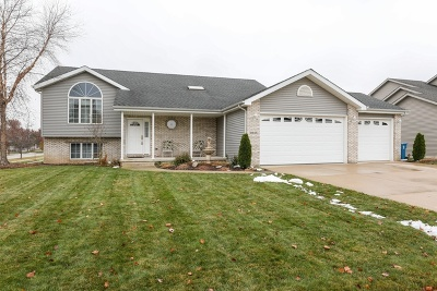 Dyer Single Family Home For Sale: 9445 Beall Street