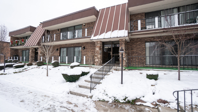 Palos Heights, Palos Hills Condo/Townhouse New: 11139 South O'gorman Drive #2N