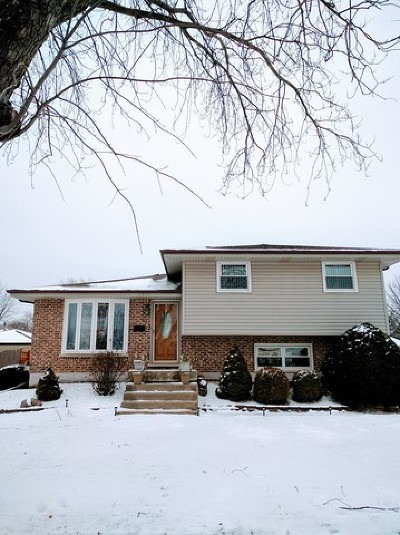 Tinley Park Single Family Home New: 16801 Oleander Avenue