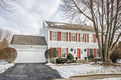 Elgin IL Single Family Home New: $274,900
