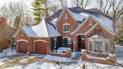 Naperville Single Family Home New: 1221 Millet Street
