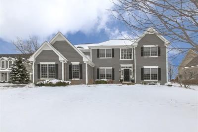 Lakewood Single Family Home For Sale: 9565 Nicklaus Lane