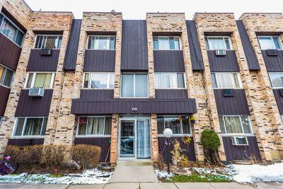 Chicago Condo/Townhouse New: 8653 West Foster Avenue #3B