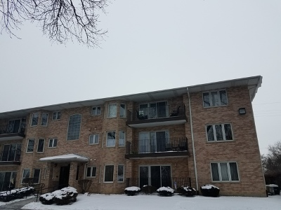 Chicago Ridge Condo/Townhouse For Sale: 10228 Southwest Highway #1B
