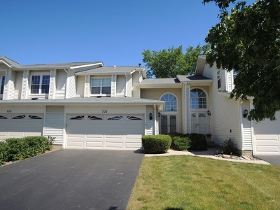 Schaumburg Condo/Townhouse New: 702 Sturnbridge Lane