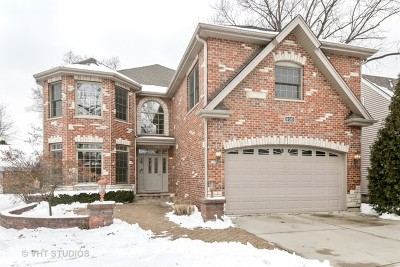 Elmhurst Single Family Home New: 950 South Swain Avenue