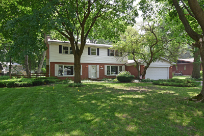Palatine Single Family Home New: 317 East Forest Lane