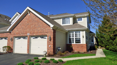 St. Charles Condo/Townhouse New: 229 Remington Drive