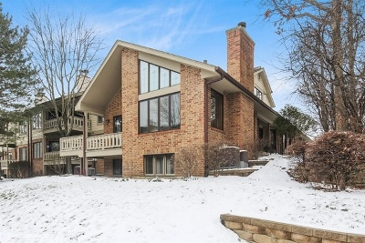 Downers Grove Condo/Townhouse New: 1148 Mistwood Lane