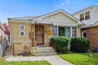Chicago Single Family Home New: 3917 North Odell Avenue