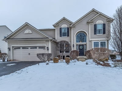 Plainfield Single Family Home Contingent: 25012 Canterbury Court