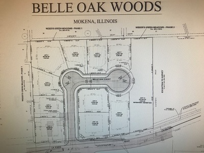 Mokena Residential Lots & Land New: 10508 West La Porte Road