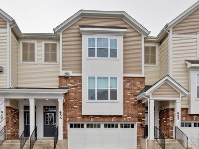 Palatine Condo/Townhouse New: 866 West Chase Lane