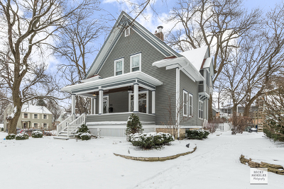 Naperville Single Family Home New: 231 South Columbia Street