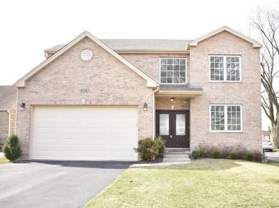 Elmhurst Single Family Home New: 618 West Belden Avenue