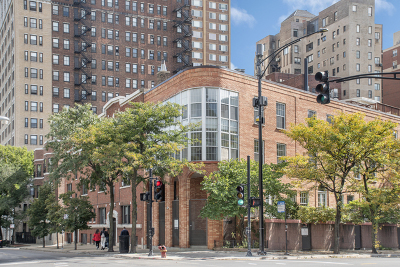 Chicago Condo/Townhouse New: 339 West Webster Avenue #8H