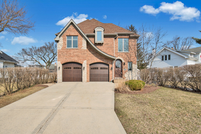 Elmhurst Single Family Home New: 189 East May Street