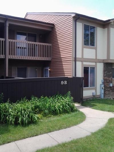 Bolingbrook Rental For Rent: 9 Fernwood Drive #B