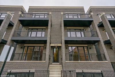 Chicago Condo/Townhouse New: 819 North Paulina Street #2N
