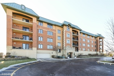 Orland Park IL Condo/Townhouse New: $329,900