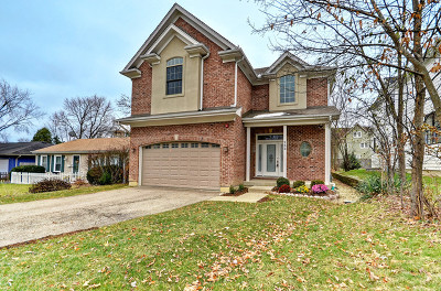 Barrington Single Family Home New: 752 Prairie Avenue