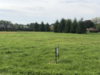 Plainfield Residential Lots & Land For Sale: 24825 Barolo Drive