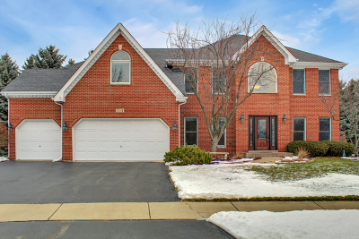 Naperville IL Single Family Home New: $514,900