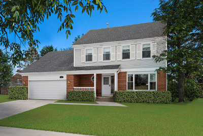Buffalo Grove Single Family Home For Sale: 2145 Silver Linden Lane