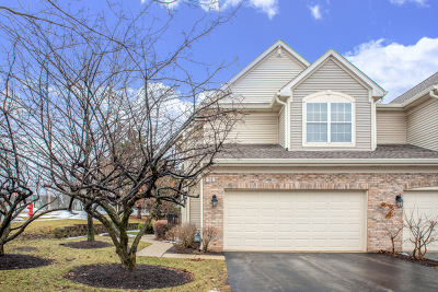 Schaumburg Condo/Townhouse For Sale: 74 Egg Harbour Court