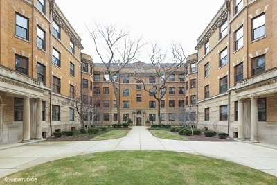 Condo/Townhouse New: 676 West Irving Park Road #F2