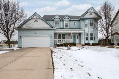 Oswego Single Family Home New: 393 Essex Drive