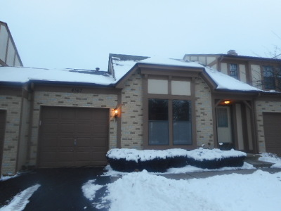 Hoffman Estates Condo/Townhouse For Sale: 4567 Olmstead Drive