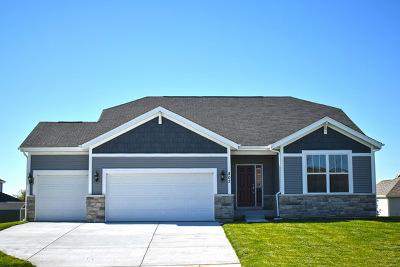Island Lake Single Family Home For Sale: 1941 Foxridge Drive