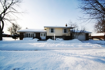 Schaumburg Single Family Home For Sale: 746 Summit Drive