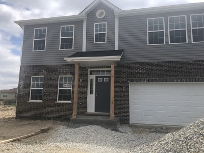 New Lenox IL Single Family Home New: $331,900