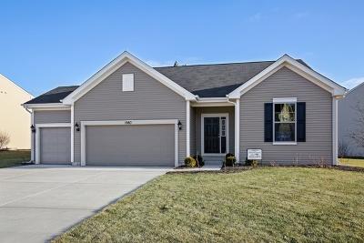 Island Lake Single Family Home For Sale: 1980 Walnut Glen Boulevard