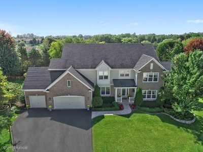 Lake Zurich Single Family Home For Sale: 1074 Omalley Court