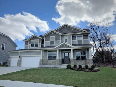 Hawthorn Woods IL Single Family Home New: $599,990